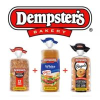 Dempster's Case Study